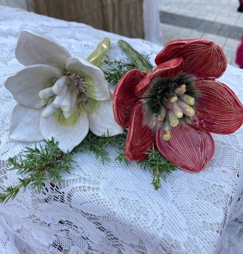 Punainen ja valkoinen kukka